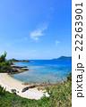 海 夏 砂浜の写真 22263901