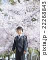桜と新学期の男の子 22268843