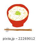うどん 饂飩 麺類のイラスト 22269012
