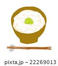 うどん 饂飩 麺類のイラスト 22269013