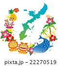 沖縄素材 沖縄県 22270519
