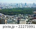 都市風景 明治神宮の緑 22273991