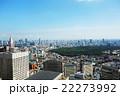 都市風景 明治神宮の緑 22273992