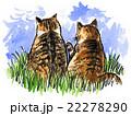 動物 猫 水彩のイラスト 22278290