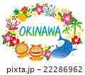 沖縄 沖縄素材 アイコンのイラスト 22286962