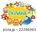 沖縄素材 アイコン ロゴ 22286963
