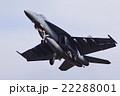 F18 F/A-18 スーパーホーネットの写真 22288001