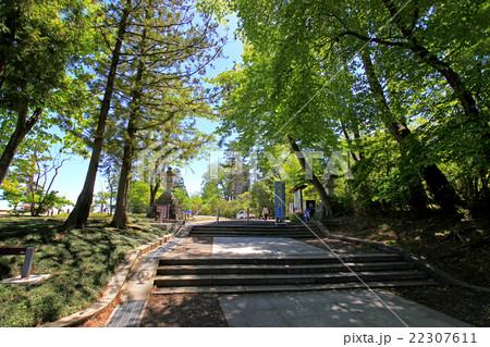 青葉山公園 22307611