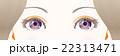 女性の目元 / 紫 22313471
