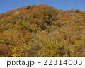 紅葉の山 22314003