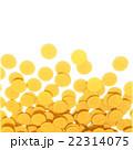 ポイントコイン 22314075