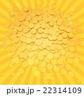 ポイントコイン 22314109