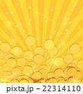 ポイントコイン 22314110
