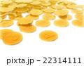 ポイントコイン 22314111