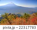 紅葉の御坂山地・王岳から見る富士山 22317783
