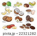 Collection of different nuts 22321282