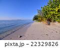 海 ビーチ 浜の写真 22329826