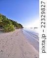 モルディブのビーチ 22329827