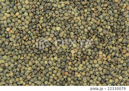 フレンチグリーンレンズ豆: French Green Lentils 22330079