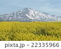 鳥海山 22335966