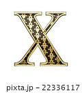 × 黄金 金色のイラスト 22336117