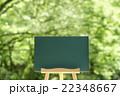 森の黒板 22348667