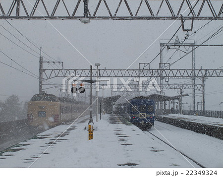 雪の舞い降る、485系雷鳥と24系日本海の国鉄型共演 近江舞子駅 22349324