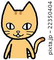 猫 表情 感情のイラスト 22350404