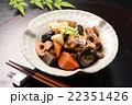 煮物 筑前煮 和食 にんじん たけのこ 椎茸 22351426