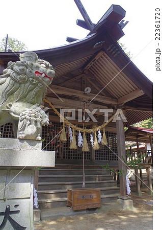 信州 上伊那 辰野町の神社 北大出 神明神社 天狗祭りは無形文化財指定 左狛犬と拝殿俯瞰 縦 22361720