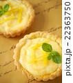 レモンタルト 背景茶(ハイアングル) 22363750