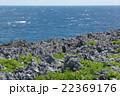 鋭利な岩場とクサトベラが群生する辺戸岬、沖縄本島最北端 22369176
