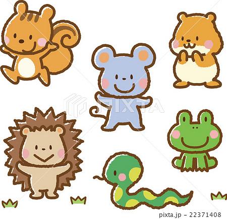 動物イラスト素材セット小動物のイラスト素材 22371408 Pixta
