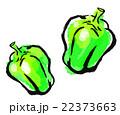 墨絵 挿絵 野菜のイラスト 22373663
