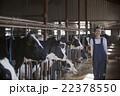 酪農 女性 22378550