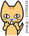 猫 表情 感情のイラスト 22390819