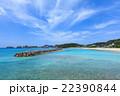 阿嘉島 海 前浜の写真 22390844