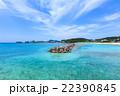 阿嘉島 海 前浜の写真 22390845