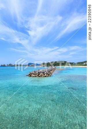 前浜 阿嘉島 22390846
