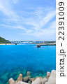 阿嘉大橋 橋 海の写真 22391009