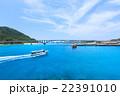 阿嘉大橋 橋 海の写真 22391010