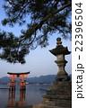 宮島より 22396504