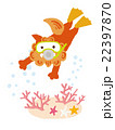 シーサー スキューバダイビング ダイビングのイラスト 22397870