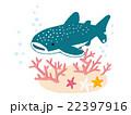 ジンベイザメ サメ 海中のイラスト 22397916