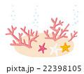 珊瑚 22398105