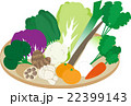 冬の野菜 22399143