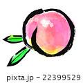 墨絵 果物 フルーツのイラスト 22399529