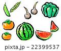 筆描き 野菜 果物 セット 22399537