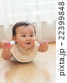 10 months old 22399848