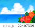 海とハイビスカス 22407339